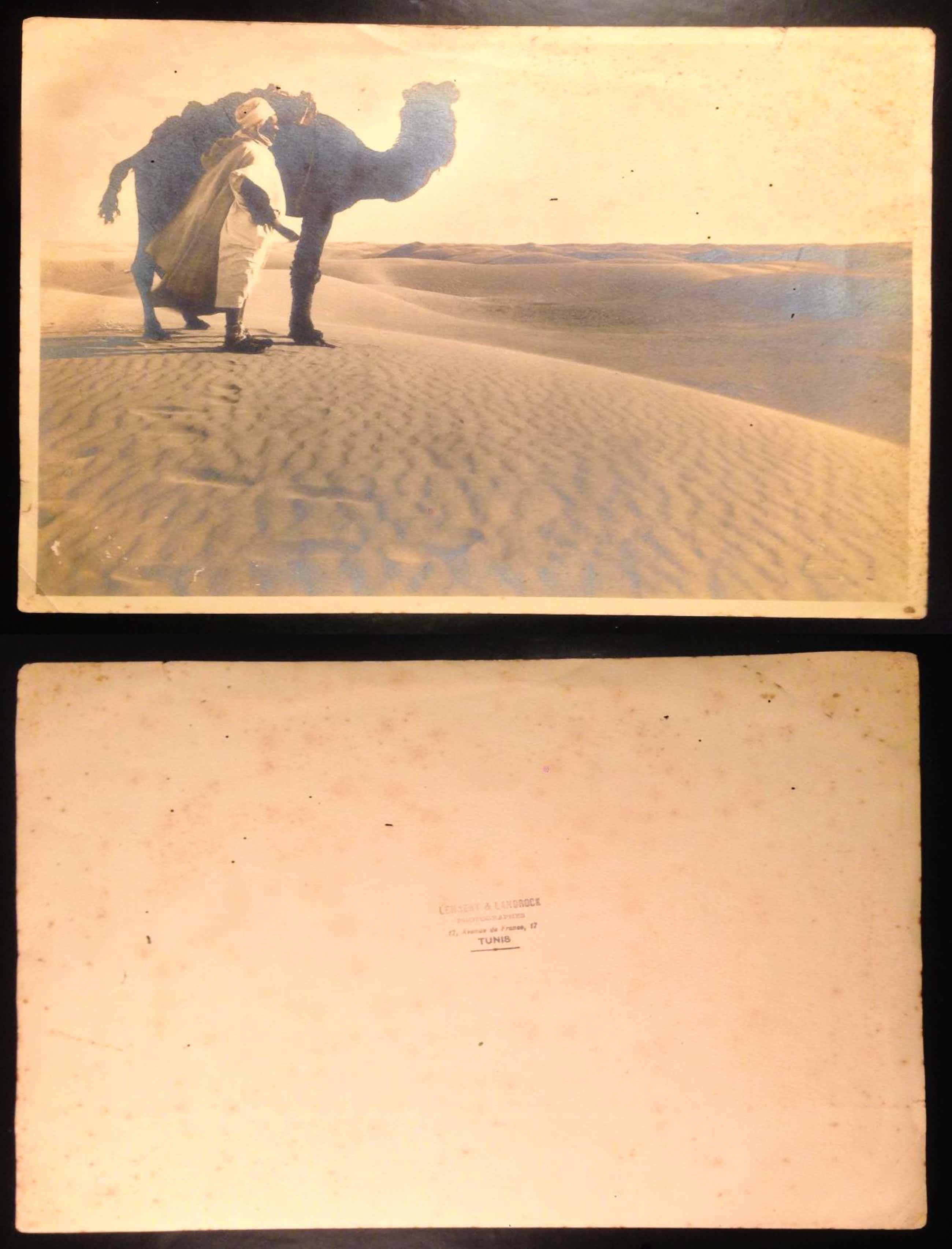 Rudolf & Ernst Lehnert & Landrock - 1905, Vintage In der Wüste, Tunis. photographer's- and copyright stamp kopen? Bied vanaf 125!