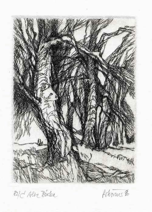 Gottfried Körner - - ALTE BIRKE - OriginalRadierung des DRESDENer Künstlers - 1990 handsigniert & betitelt kopen? Bied vanaf 26!