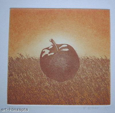 Reimund Franke - APFEL im FELD OriginalRadierung - handsigniert 1973, Handdruck des ESSENer FOLKWANG-SCHÜLERS kopen? Bied vanaf 45!
