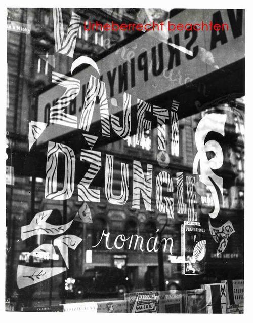 Josef Ehm - AUSBLICK & WIEDERSCHEIN - Original Silbergelatine-Abzug des Fotographen der TSCHECHISCHEN AVANGARDE kopen? Bied vanaf 115!