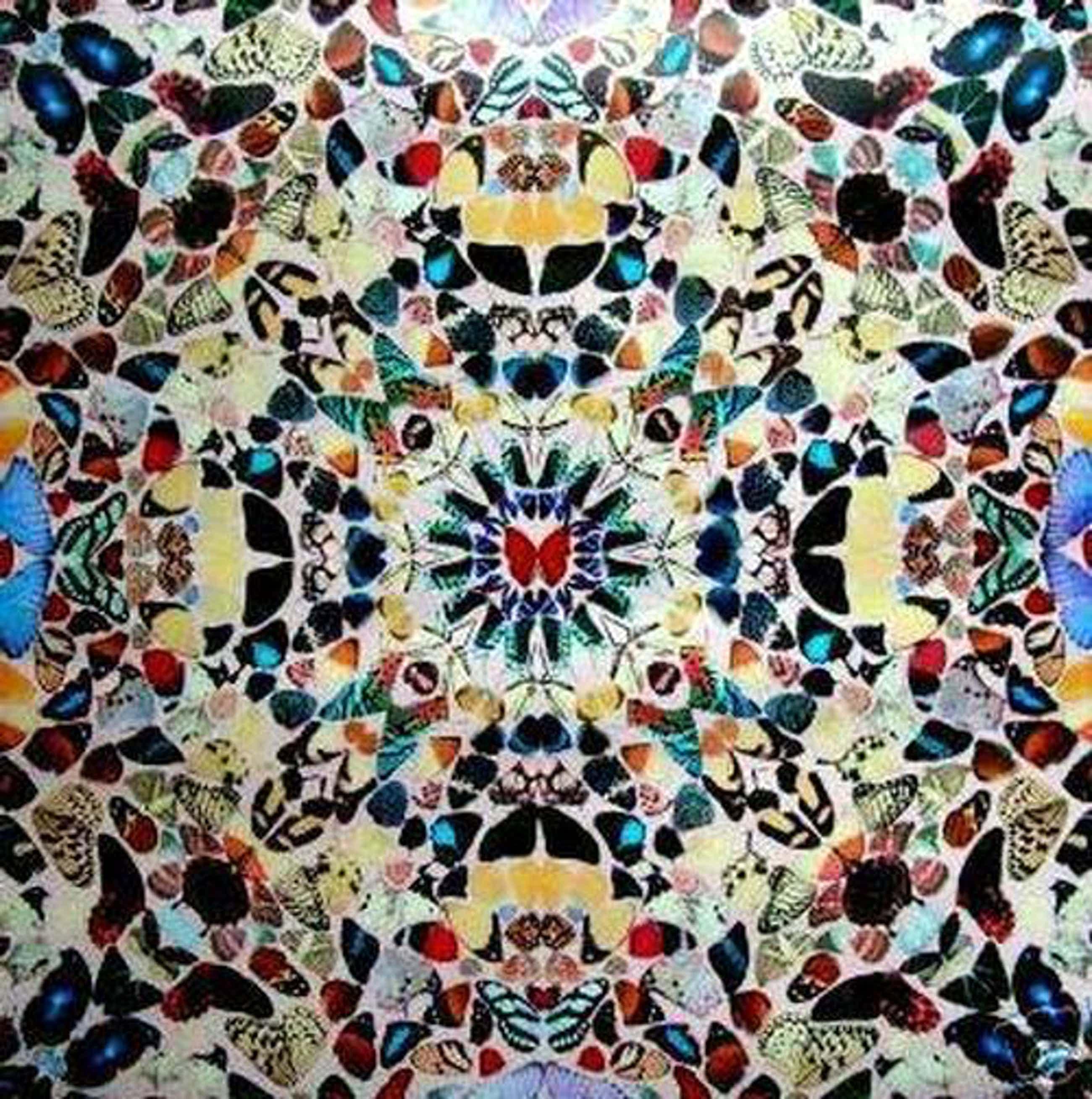 Damien Hirst - Butterfly Wallpaper kopen? Bied vanaf 175!