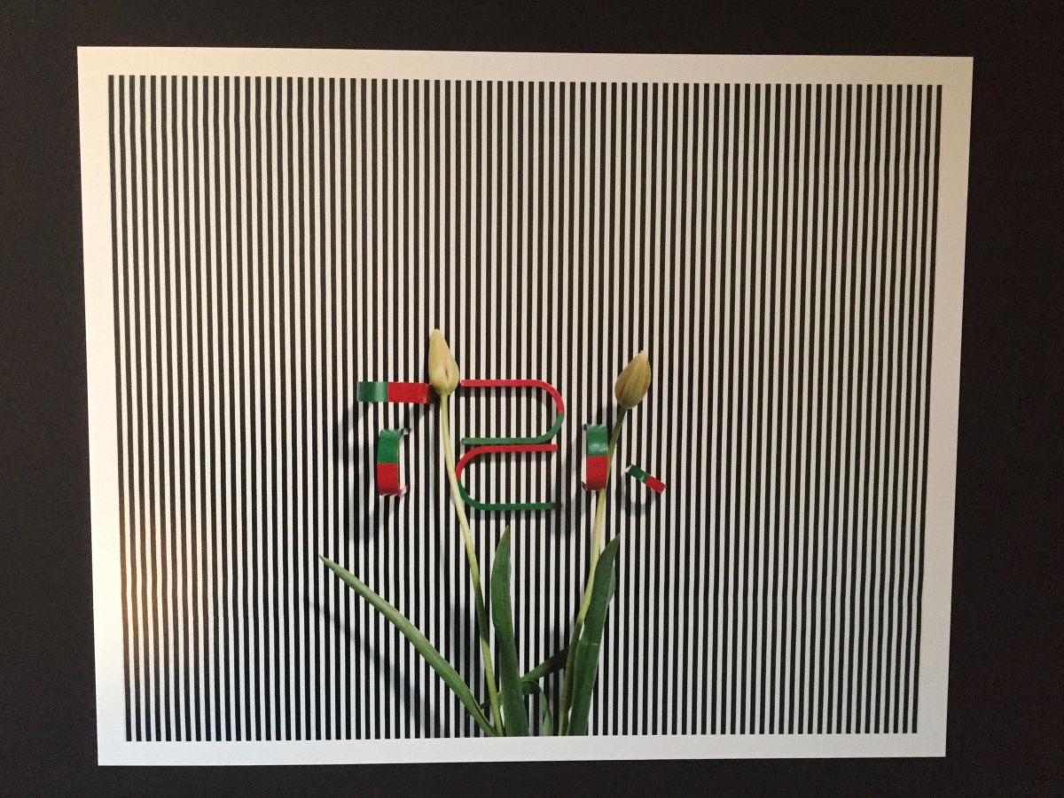 Annette Kelm - c-print, XX/100, handsigniert, nummeriert, vergrifffen kopen? Bied vanaf 750!