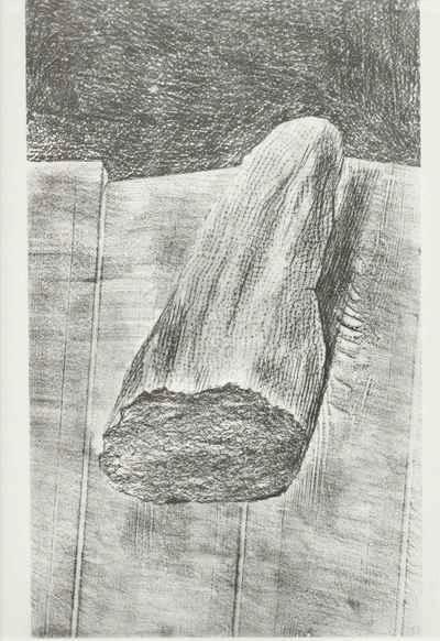 Max Ernst - Das GEIMPFTE BROT - Histoire Naturelle 1926 - FROTTAGE in EDELDRUCK durch HATJE 1972 kopen? Bied vanaf 52!