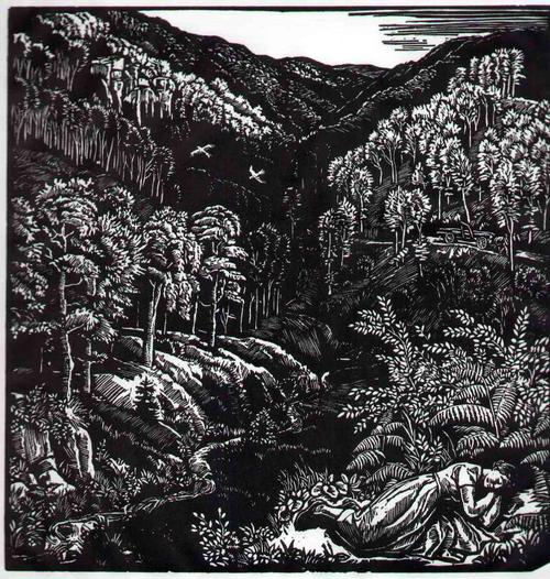 Rudolf Riege - Der GROSSE WALD - OriginalHolzschnitt des Walter KLEMM-Schülers aus dem WESERBERGLAND-HAMELN kopen? Bied vanaf 65!