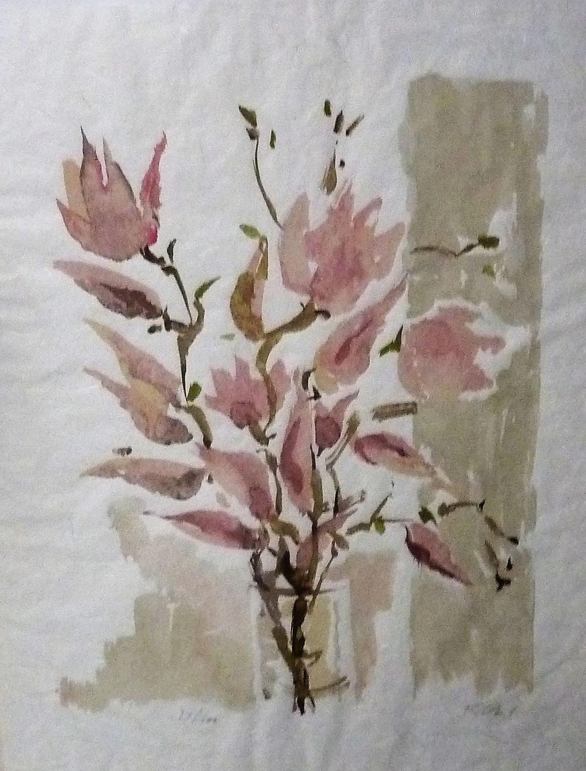 Hans André Ficus - Ficus, Andre´, Große Farblithographie Magnolie, Tulpenbaum, signiert, num. kopen? Bied vanaf 150!