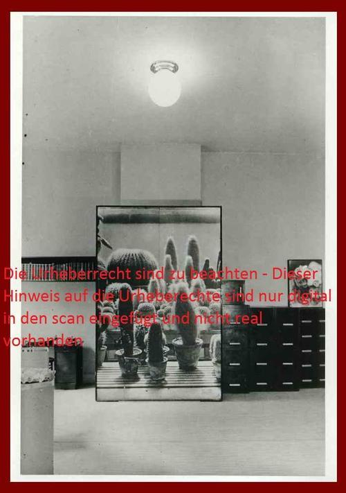 Sasha Stone - FOTODEKORATION für einen BÜRORAUM um 1938 Fotografie des DADA-Collagisten kopen? Bied vanaf 150!