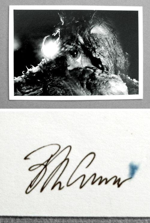 Micha Brendel - Fotografie, 1985. kopen? Bied vanaf 220!