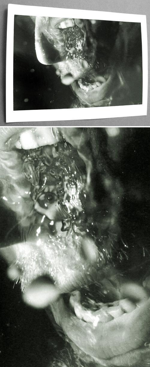 Micha Brendel - Fotografie, 1985. kopen? Bied vanaf 300!
