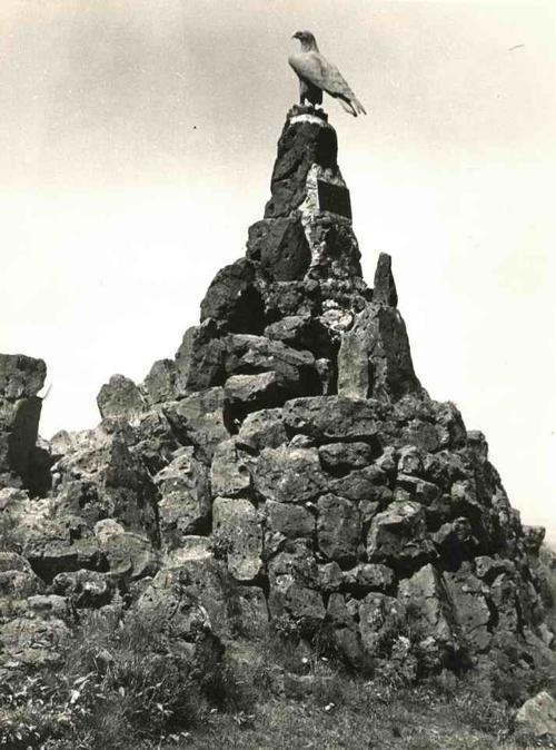 Paul W. John - Fotografiert DEUTSCHLAND: Das FLIEGER-DENKMAL in der RHÖN auf dem GIPFEL der WASSERKUPPE - um 1935 kopen? Bied vanaf 38!