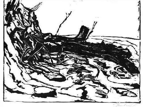 Jörg Bernkopf - GESTÜRZTE BUCHE AM STRAND - handsignierter OriginalHolzschnitt des Künstlers aus HANNOVER - 1994 kopen? Bied vanaf 32!