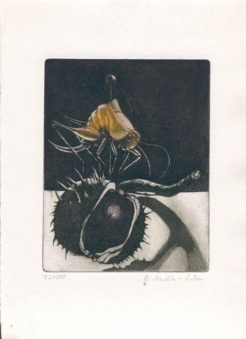 Renate Sendler-Peters - Heuschreck - Farbradierung von zwei Platten - 1981 kopen? Bied vanaf 80!
