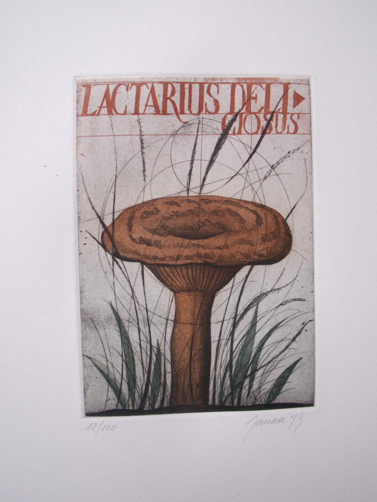 Alois Janak - Lactarius Deliciosus (Trichterpilz) Farbradierung von 1979 kopen? Bied vanaf 80!