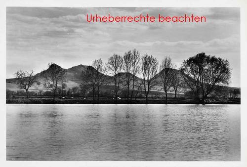 Zdenek Vozenilek - LANDSCHAFT mit BÄUMEN - Silbergelatine-Abzug des TSCHECHISCHEN FOTOGRAPHISCHEN AVANGaRDE kopen? Bied vanaf 95!