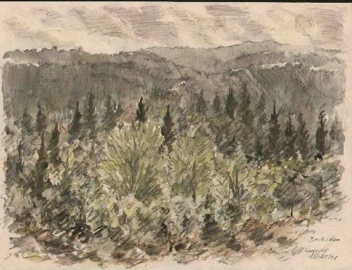 Leopold Wächtler - Mittelgebirge BESKIDEN - Handsigniertes OriginalAquarell des LEIPZIGER Künstlers - um 1930 kopen? Bied vanaf 110!