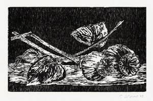 Claus Korsch - - MOHN - Original-Holzschnitt für die MEDIZINISCHEN BLÄTTER der SCHERING AG -1992 handsigniert kopen? Bied vanaf 25!