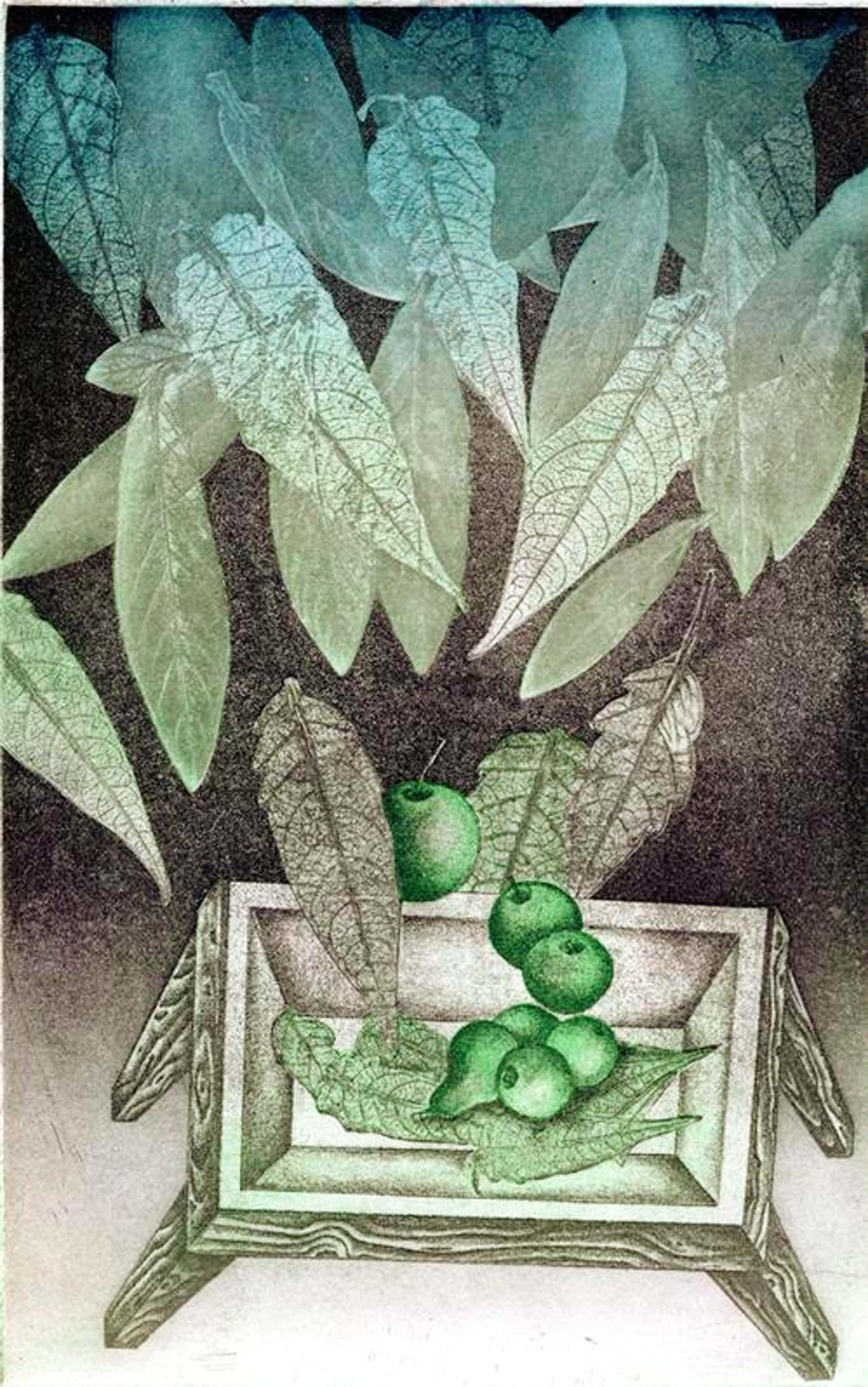 Matheos Florakis - Nature morte aux pommes, Farbradierung, 1976 kopen? Bied vanaf 50!