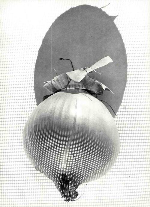 Werner Bischof - OIGNON - Fotographie des SCHWEIZER MAGNUM-Fotographen & FINSLER-Schülers: 1946 ZWIEBEL kopen? Bied vanaf 42!