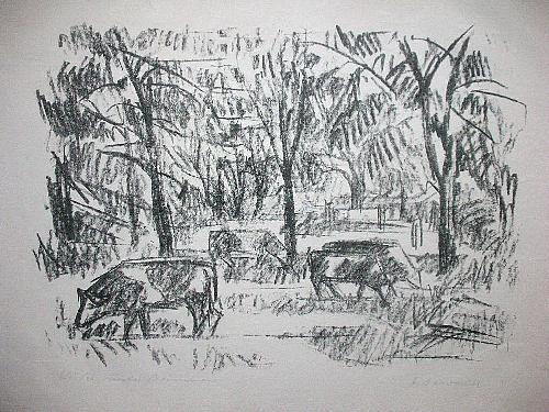 Franz Dewald - Orig. Lithographie 50er, signiert, Kühe unter Bäumen kopen? Bied vanaf 45!