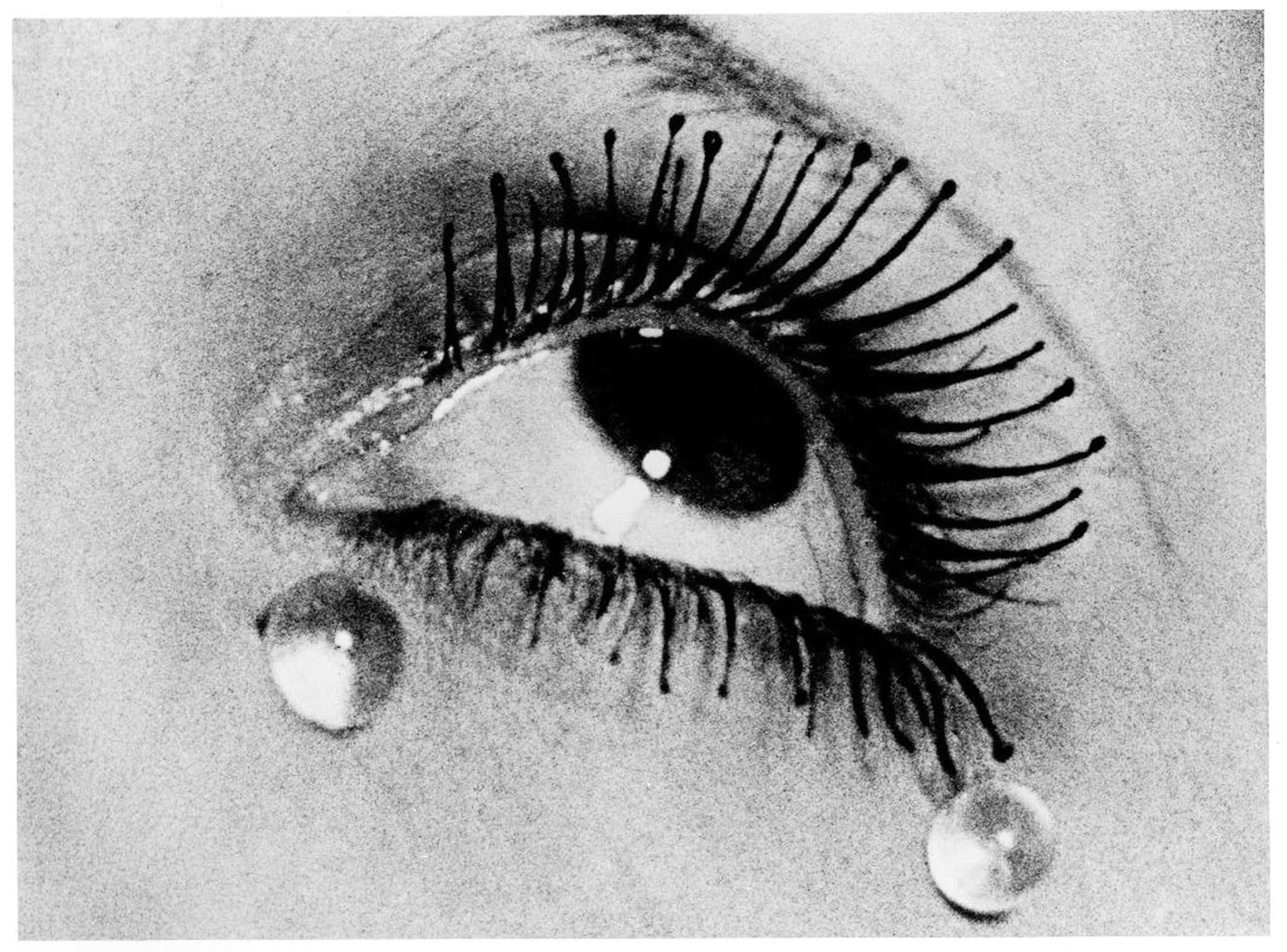 Man Ray - Original Fotografie 1930/91, Larmes kopen? Bied vanaf 1200!