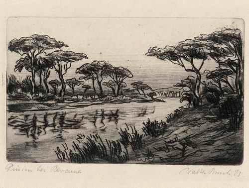 Walter Busch - OriginalRadierung des WERDENDELSER Künstlers 1923 - PINIEN bei RAVENNA - handsigniert & datiert: kopen? Bied vanaf 45!