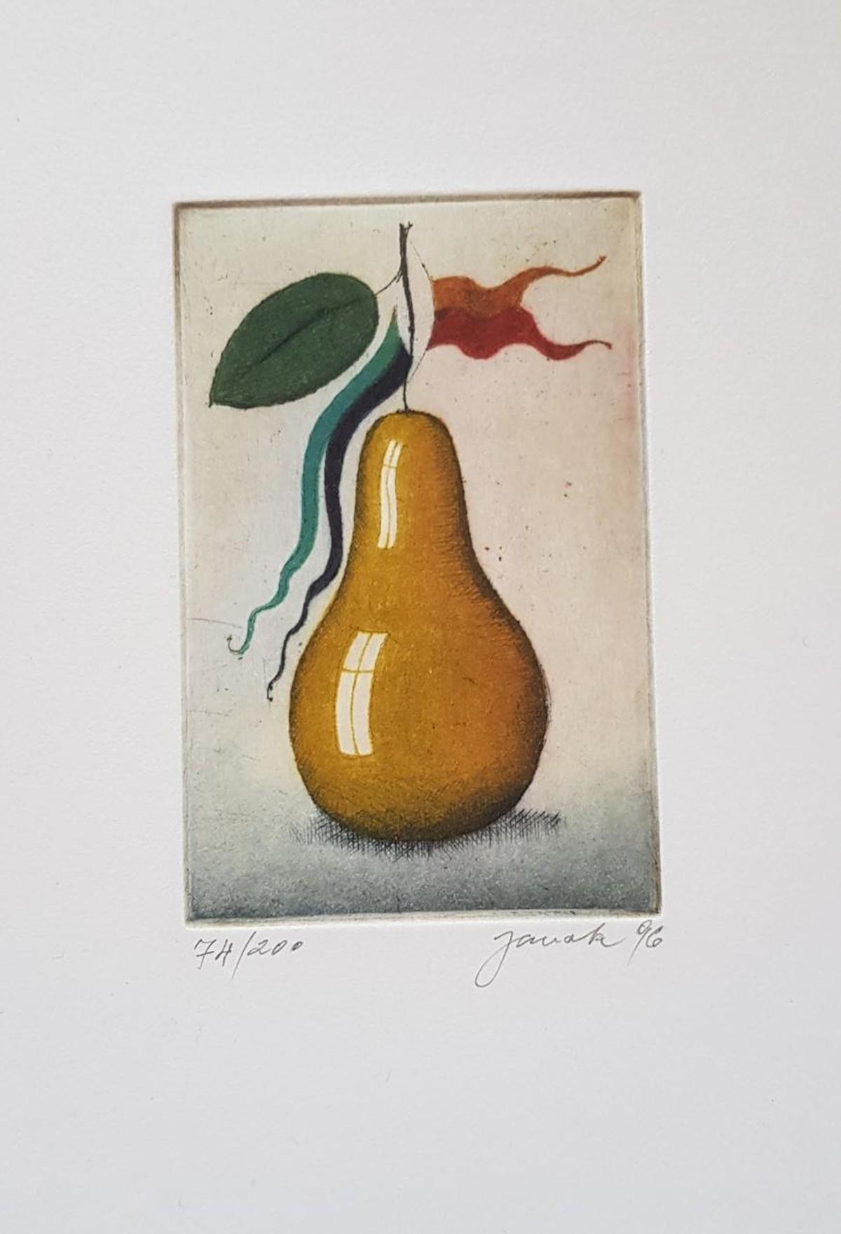 "Alois Janak - ""Birne"", Farbradierung 96 kopen? Bied vanaf 70!"
