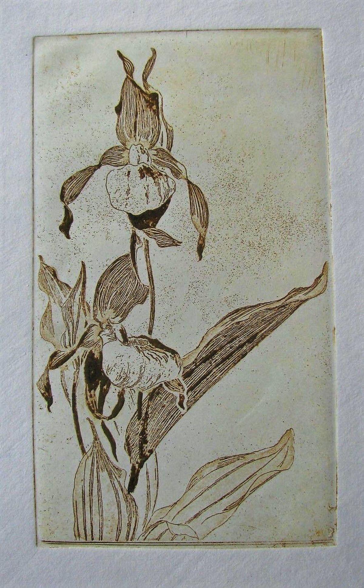 Arthur Illies - RADIERUNG - FRAUENSCHUH , 1897 . Nachlasstempel kopen? Bied vanaf 120!