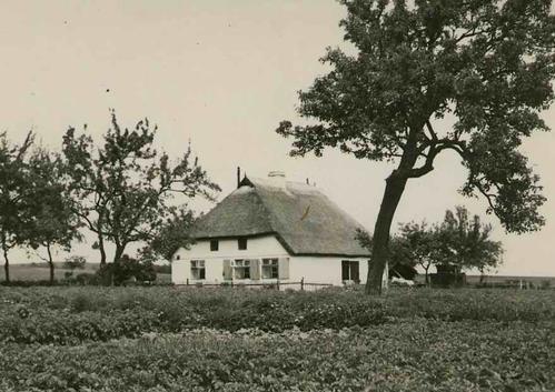 Paul W. John - RÜGEN - BAUERNHAUS ARKONA & MÖNCHGUT - OriginalFotographien des berühmten Dtschen Fotographen um1935 kopen? Bied vanaf 72!