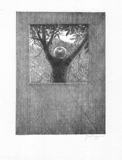 Gottfried Wiegand - Strichätzung, 17 x 12,5 cm, Blatt 24 x 20 cm, signiert kopen? Bied vanaf 49!