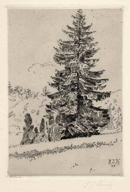 Heinrich Justus König - TANNE im WALD handsignierte OriginalRadierung des 1908 geborenen WALDMALERs † 1936 in DÜSS kopen? Bied vanaf 45!