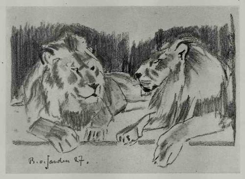 Bruno Von Sanden - TIERE - 1928 - Mappe mit 40 Zeichnungen des DOZENTEN an der STUTTGARTer AKADENMIE (meist RAUBKATZEN) kopen? Bied vanaf 140!
