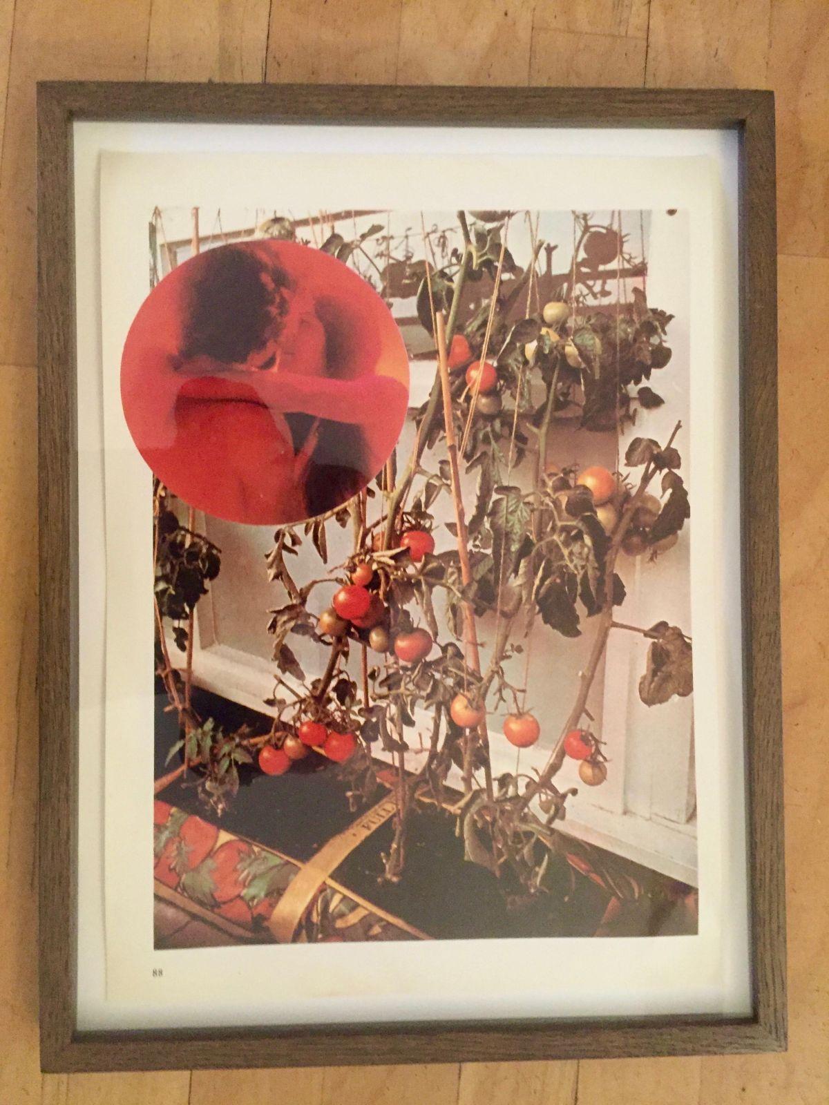 Wade Guyton - Tomato Lovers , Fotografie, signiert, nummeriert, Aufl. nur 100 kopen? Bied vanaf 1400!