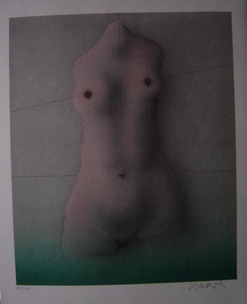 Paul Wunderlich - Torso, Original-Lithographie, 1977, 40 x 32 cm, Bild 32 x 27 cm, numeriert und handsigniert kopen? Bied vanaf 150!