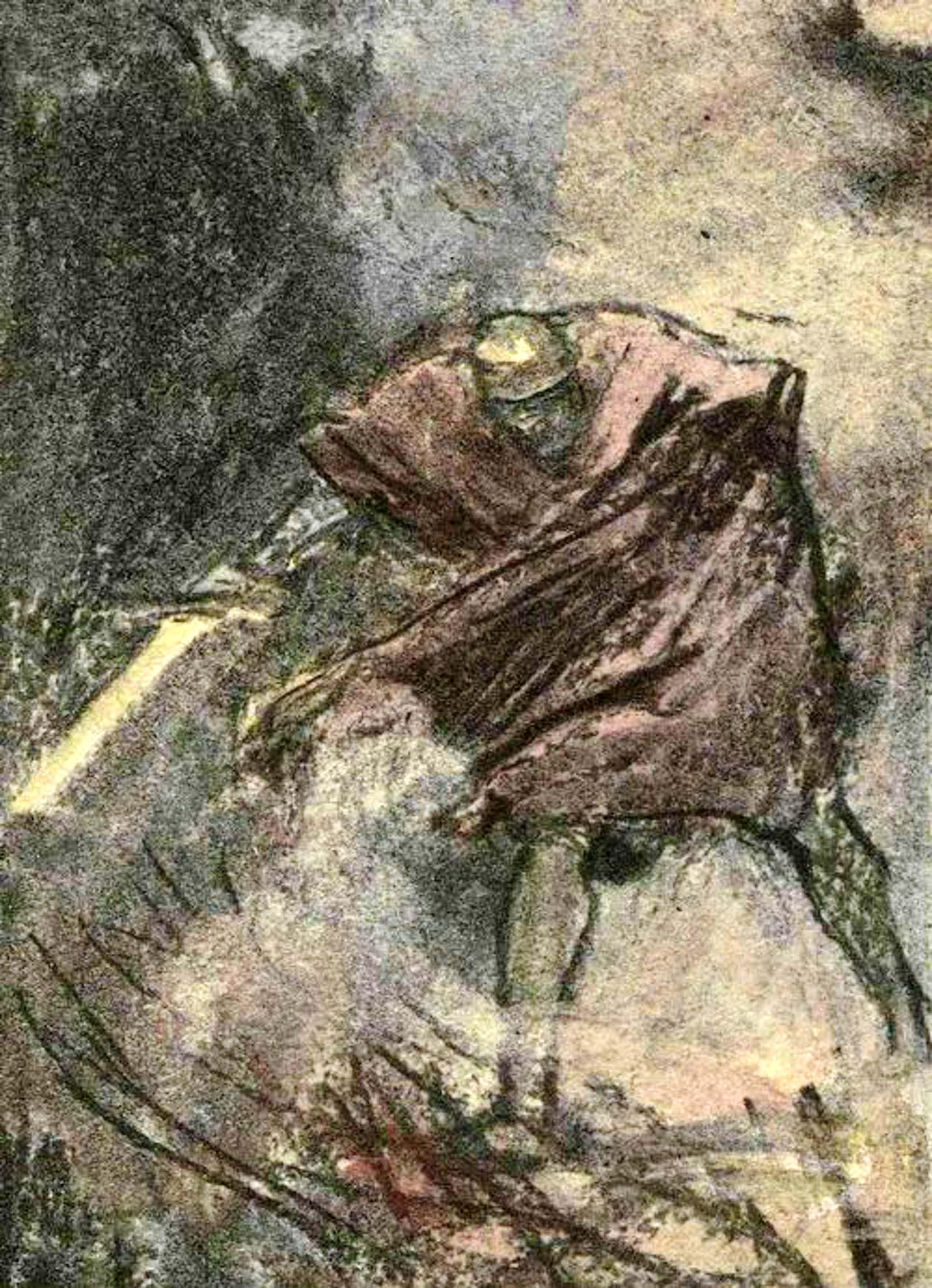 Otto Seitz - ULFNER - Original Gouache zu Germanische Mythologie 1891 (MÜNCHNER KUNSTAKADEMIE) kopen? Bied vanaf 120!