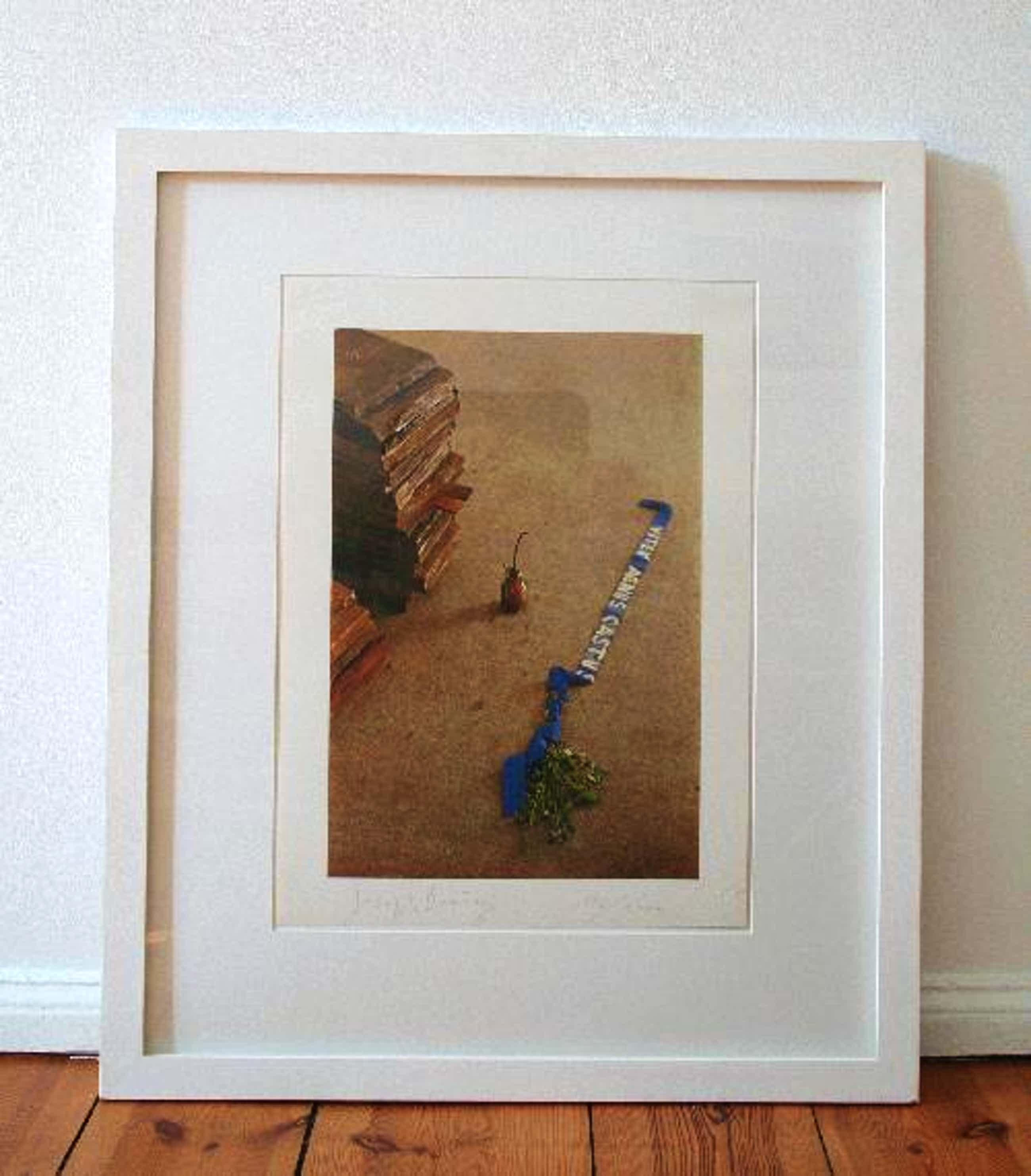Joseph Beuys - Vitex agnus castus, 1973, signiert kopen? Bied vanaf 680!