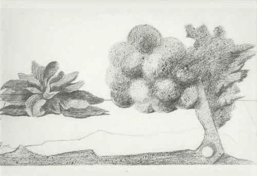 Max Ernst - VOGELSCHEUCHEN - Histoire Naturelle 1926 - FROTTAGE in EDELDRUCK durch HATJE 1972 kopen? Bied vanaf 52!