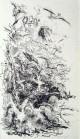 Max Slevogt - Wak Wak: Der schwarze Hengst im Vogelschwarm, Original Lithografie 1921, handsigniert kopen? Bied vanaf 180!