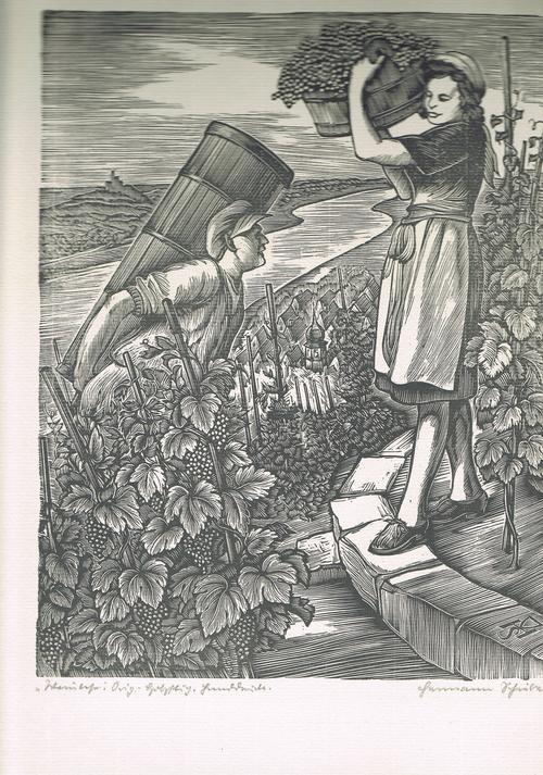 Hermann SCHIEBEL - Weinlese, Holzstich, Handdruck, um 1947 kopen? Bied vanaf 95!