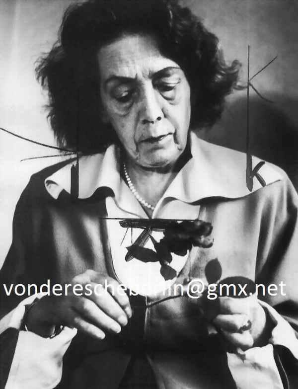 Werner Eckelt - Werner ECKELT : Mary WIGMAN - Portrait der GROSSEN TÄNZERIN des EXPRESSIONISMUS - VINTAGE - OrigFOTO kopen? Bied vanaf 130!