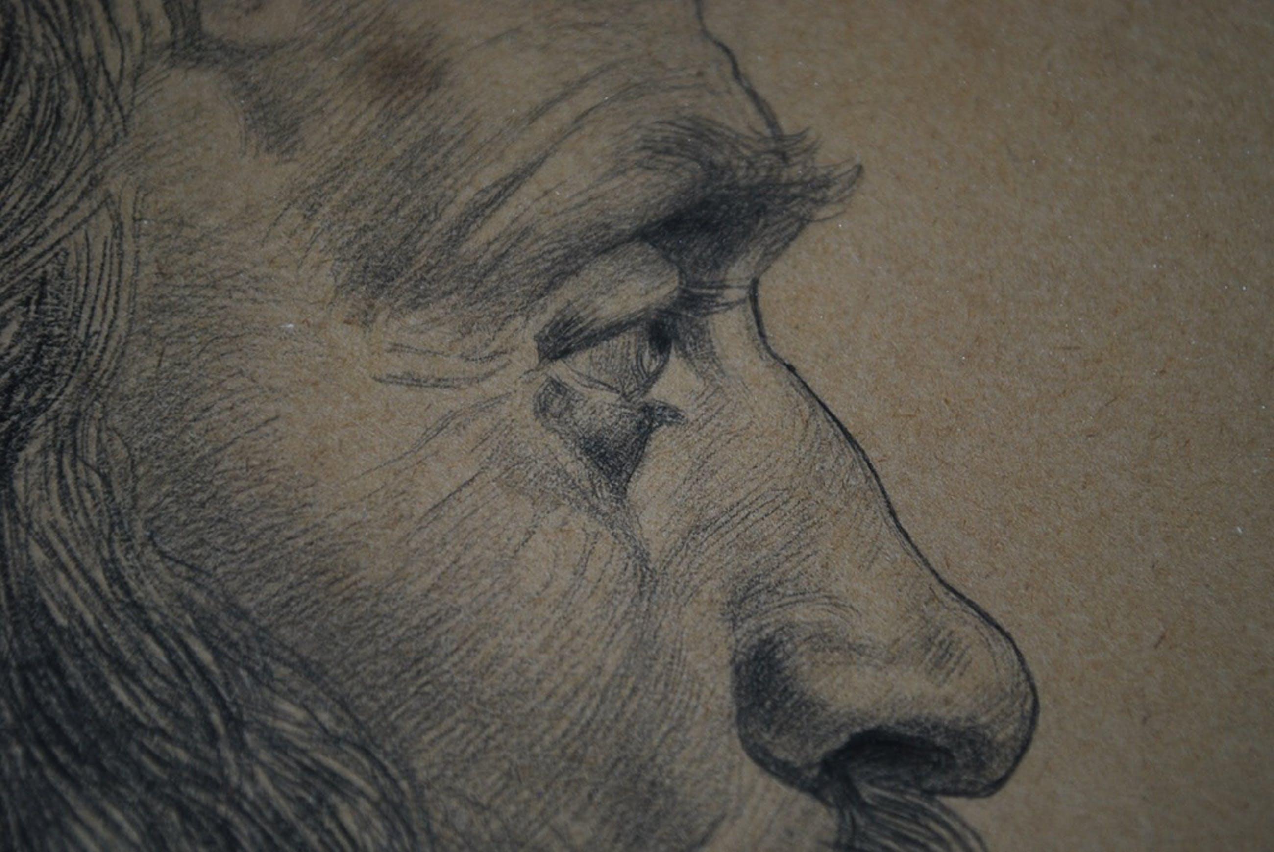 Louis Soonius 1883-1956 Tekning Portret  kopen? Bied vanaf 75!