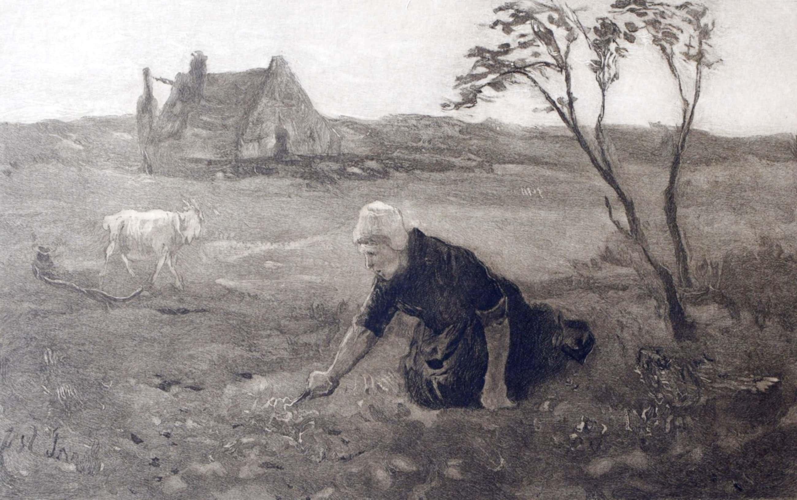 Johannes Mattheus Graadt van Roggen (1867 - 1959) - Werkende boerin op land kopen? Bied vanaf 42!