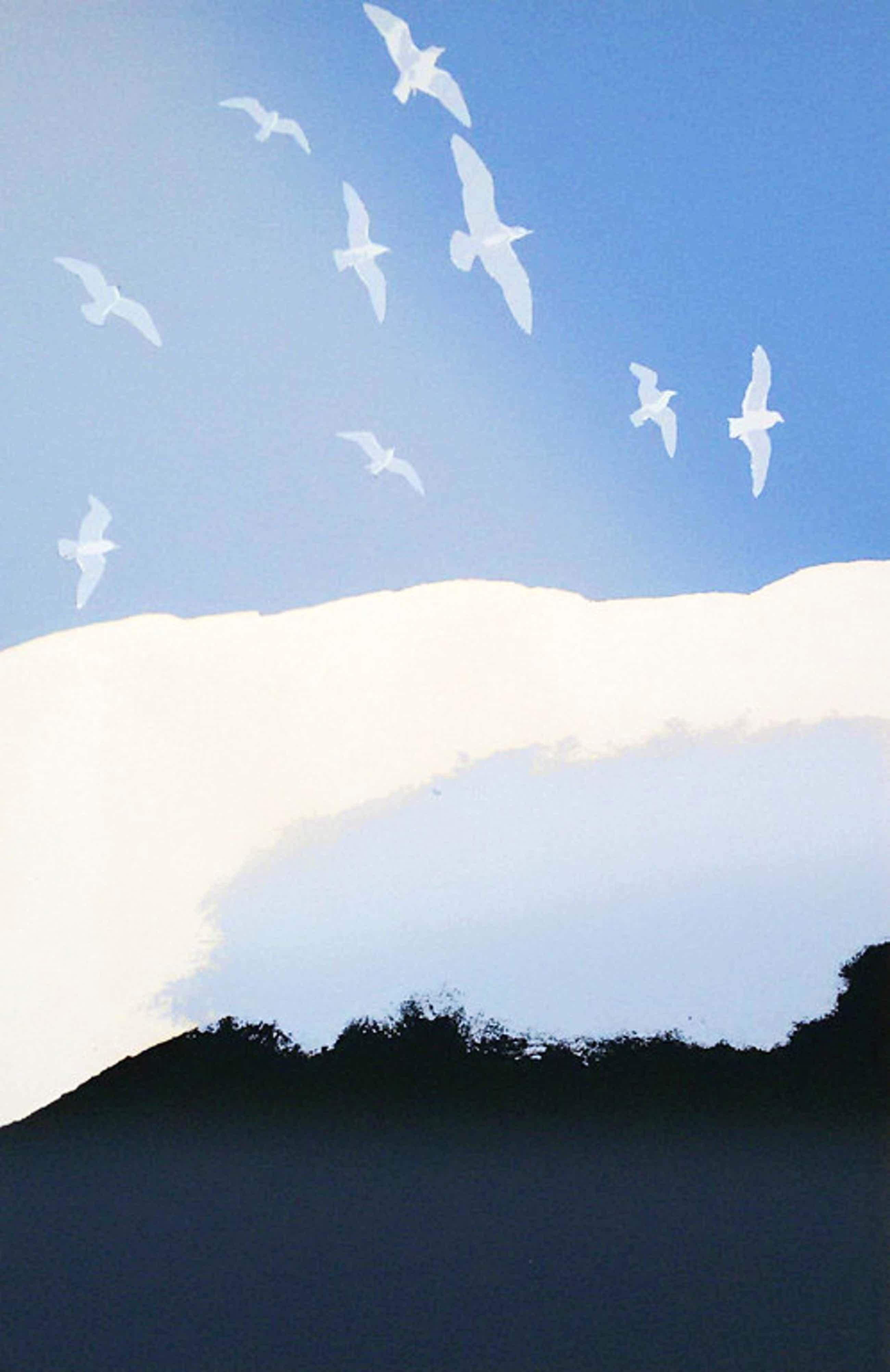 Jan Hendrix - Vogels en wolken, zeefdruk kopen? Bied vanaf 60!