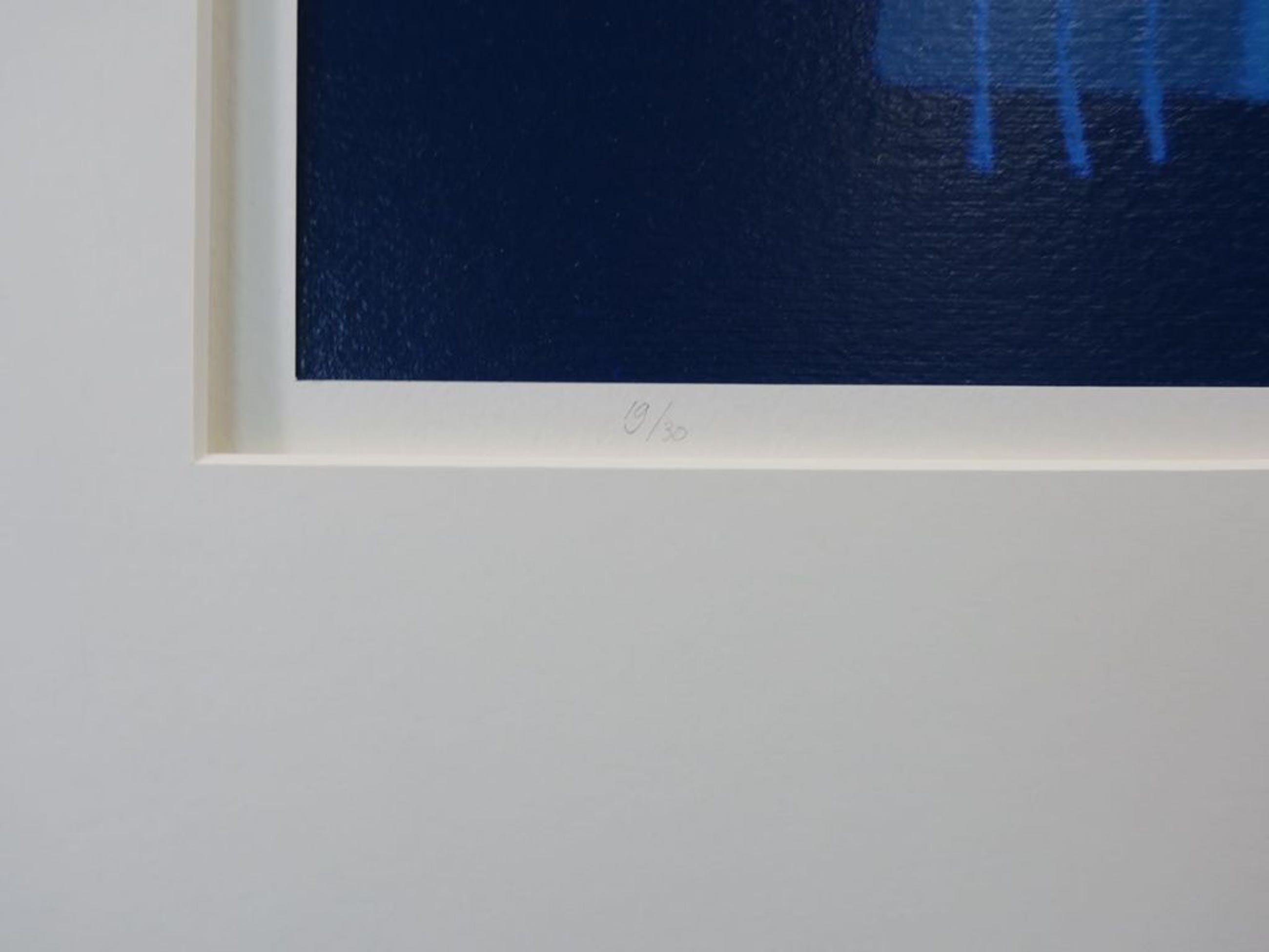 Cecile van Spronsen: Zeefdruk. Geometrische voorstelling kopen? Bied vanaf 1!