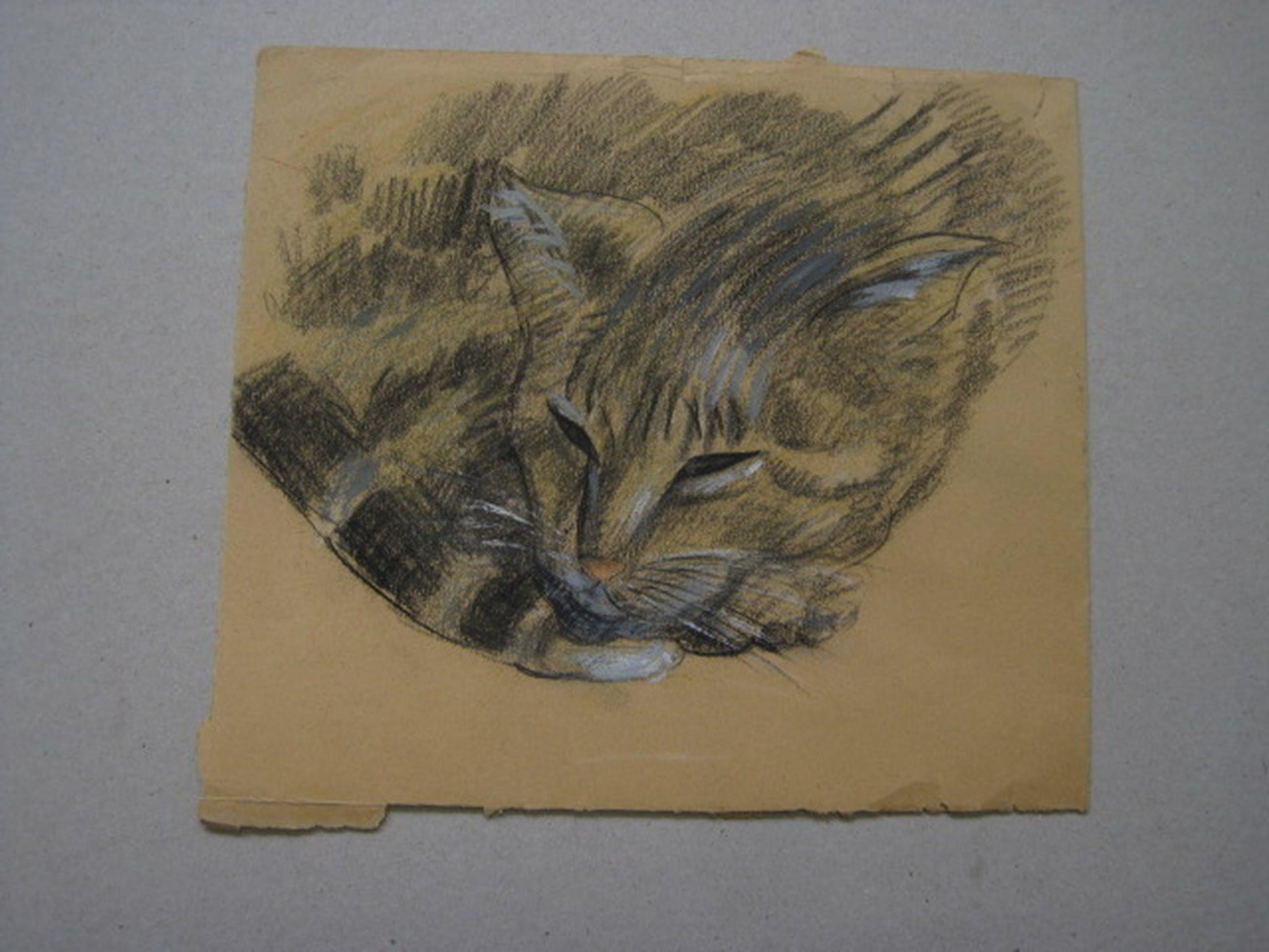 """toegeschr. aan Jan Boon 1882-1975 tekening """"liggende poes""""ca 1950 kopen? Bied vanaf 1!"""