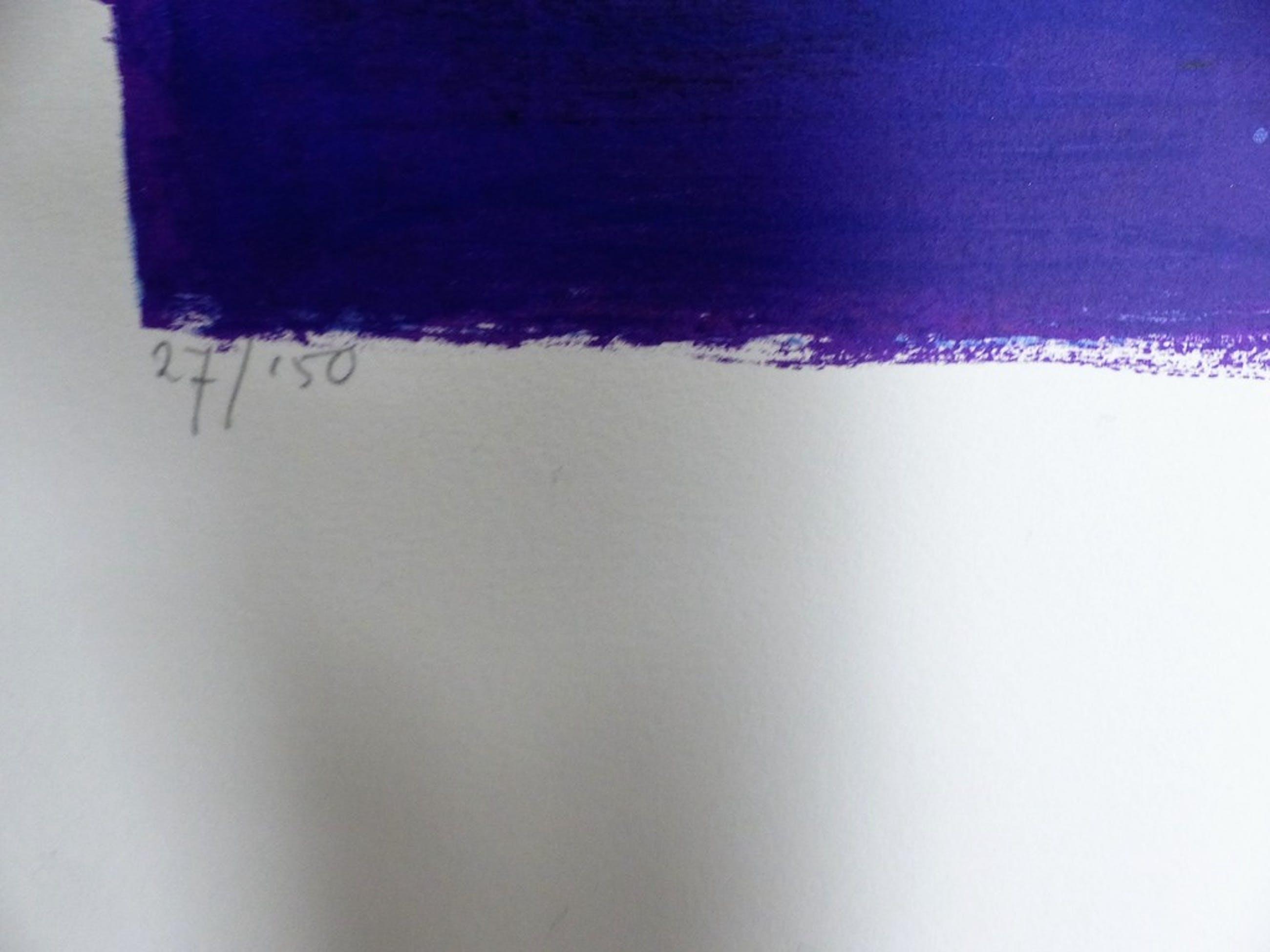 Ron v/d Werf,Zeefdruk op papier met zwelinkt, Mysterie2,Handgesigneerd kopen? Bied vanaf 50!