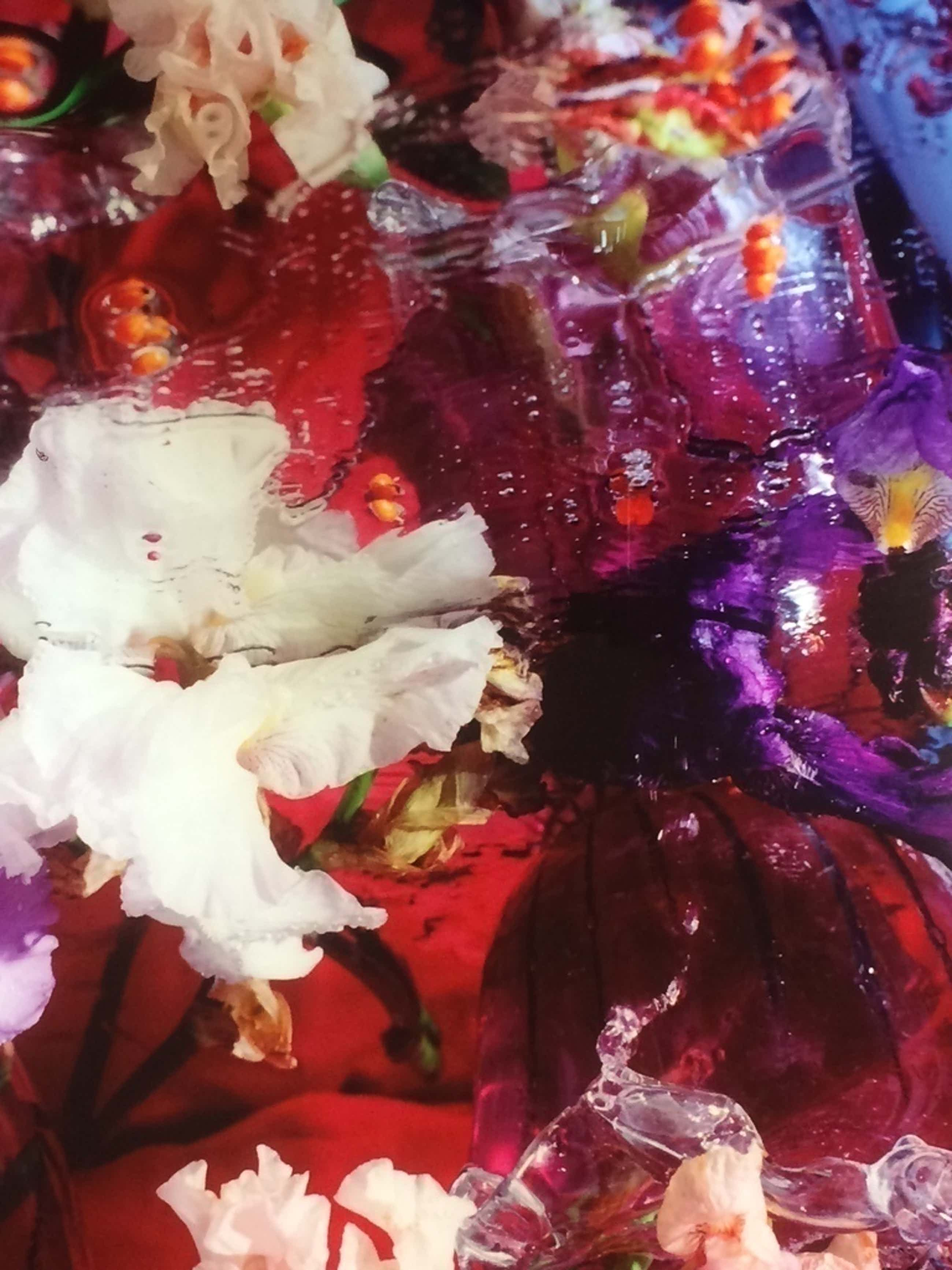 Margriet Smulders, flowers, foto/cibrachrome uit 2003 in perfecte staat. 13/25 kopen? Bied vanaf 1100!