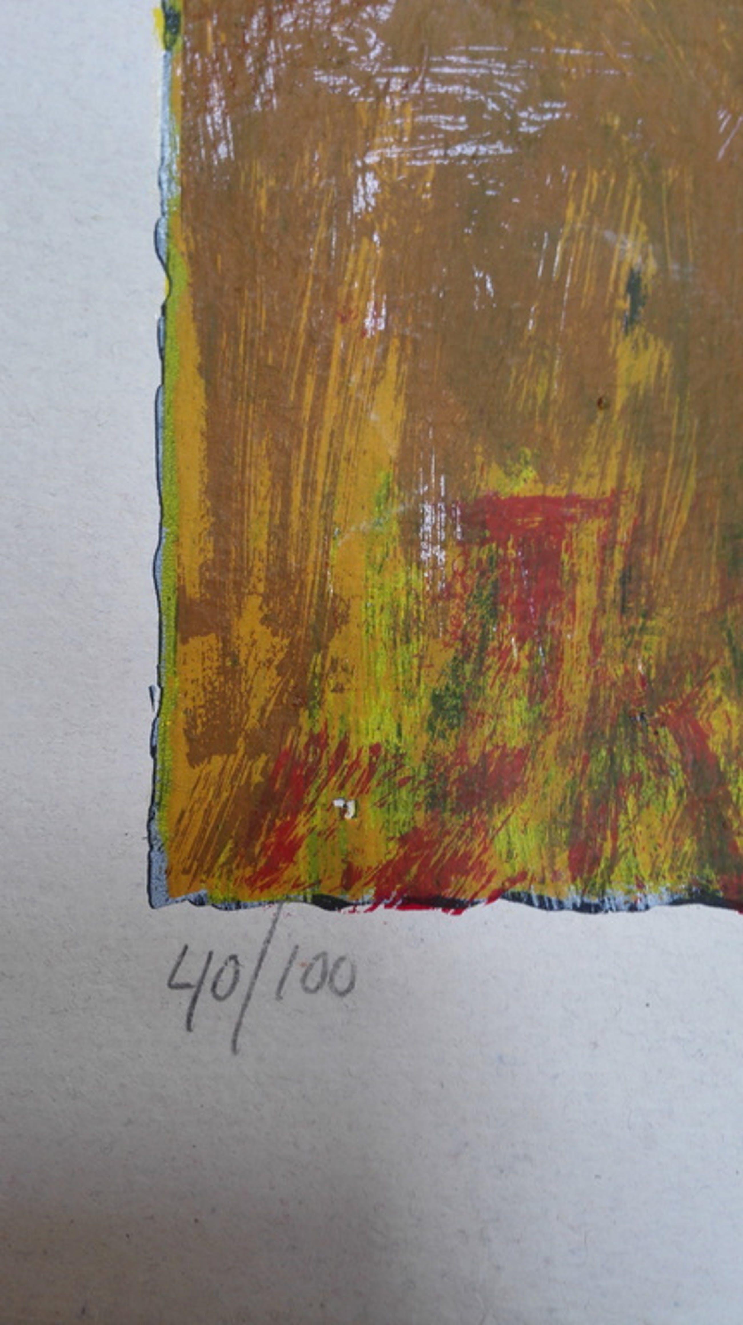 Theo Onnes, zeefdruk op handgeschept papier, Titel: Ida kopen? Bied vanaf 50!