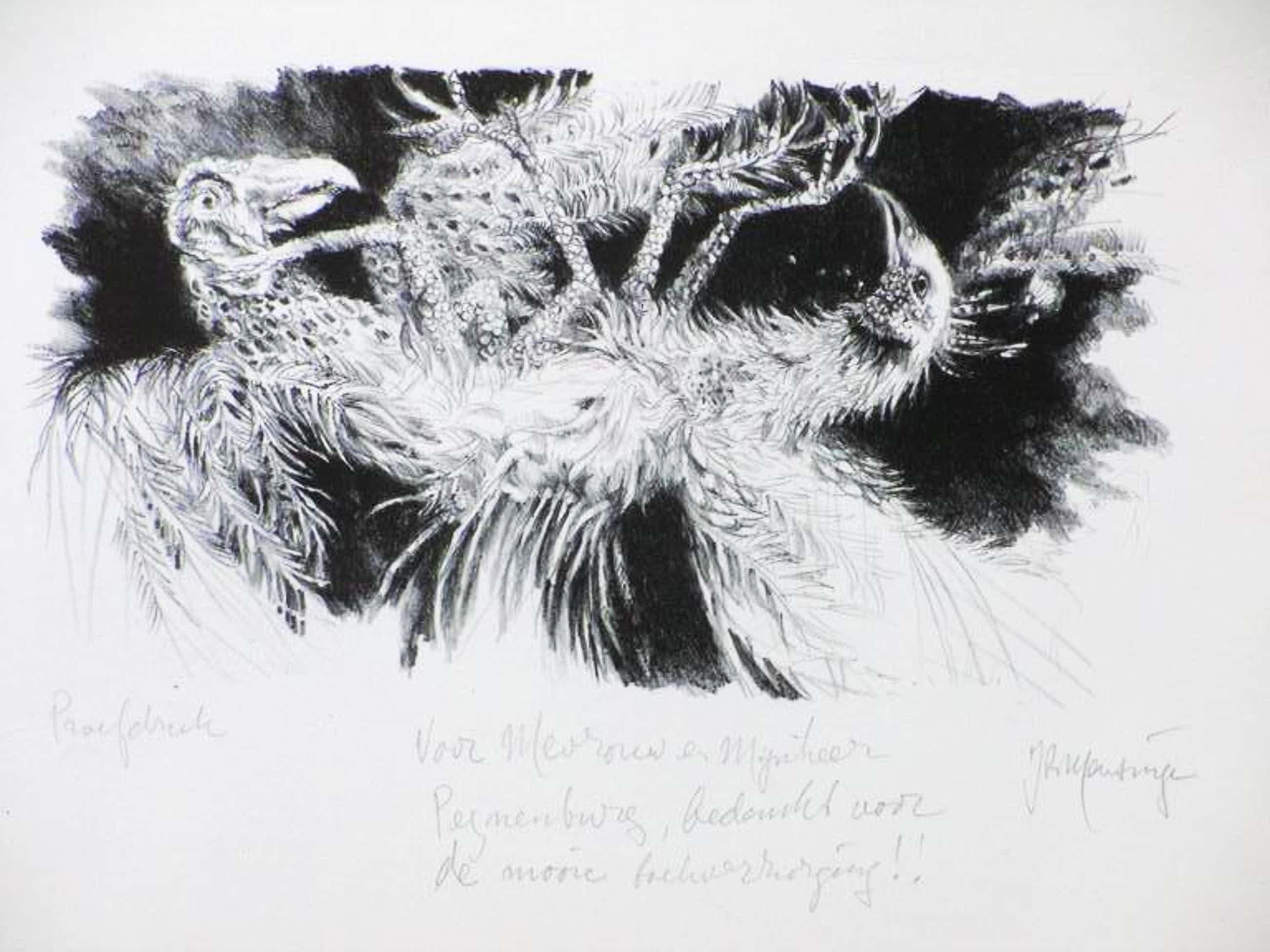 Jan Mensinga, Twee vreemde vogels, Litho kopen? Bied vanaf 45!