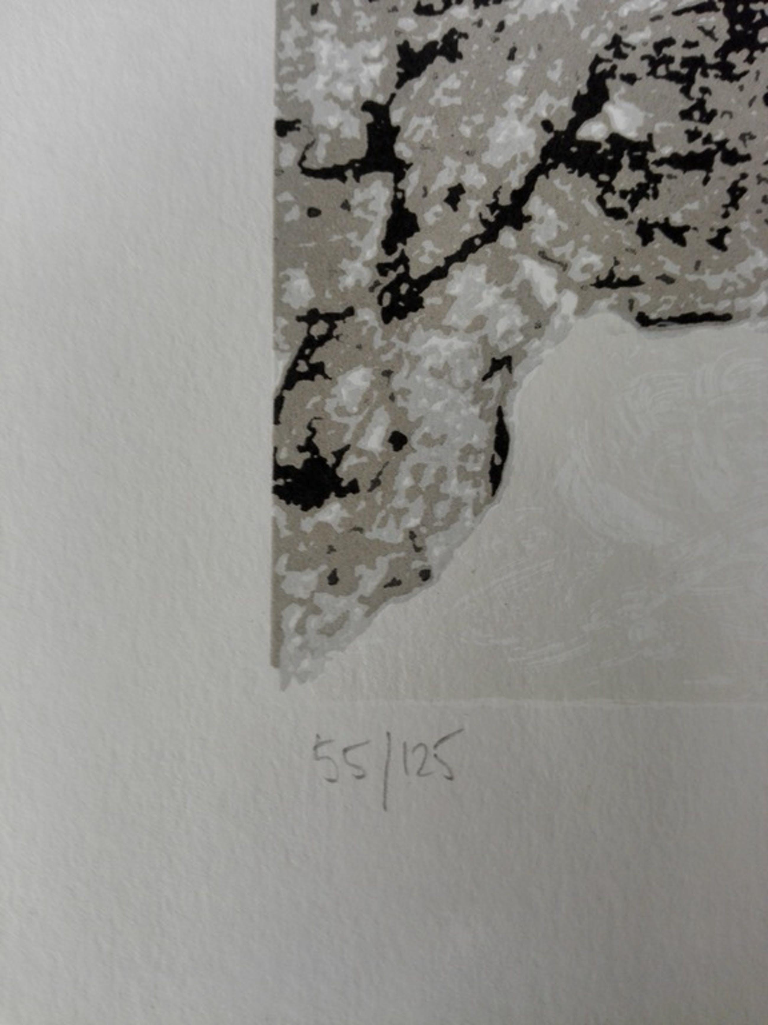 Ronald Boonacker, zeefdruk op papier, Titel: night sky II kopen? Bied vanaf 40!