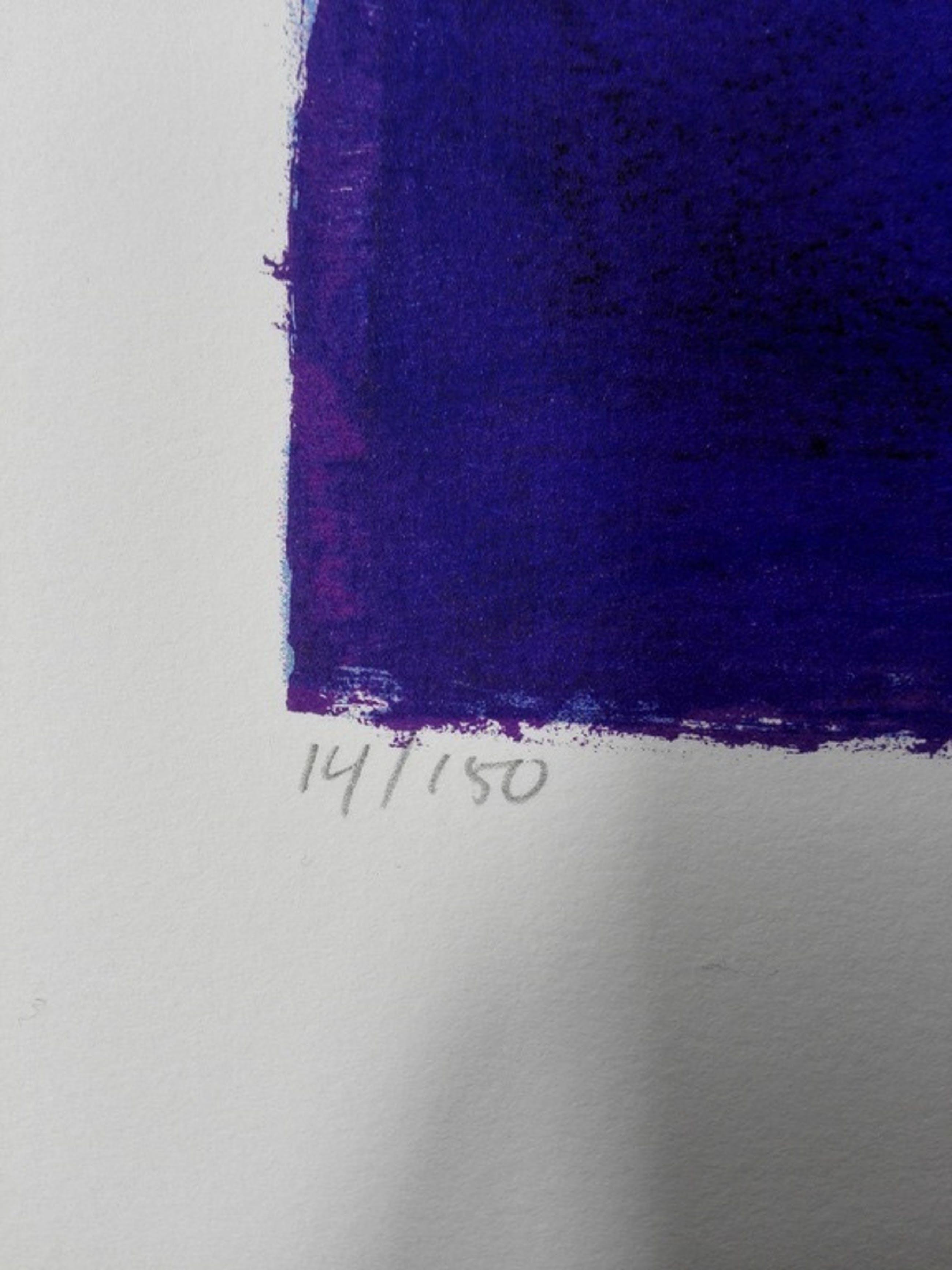 Ron van der Werf, zeefdruk op papier, Titel: Mysterie II kopen? Bied vanaf 40!