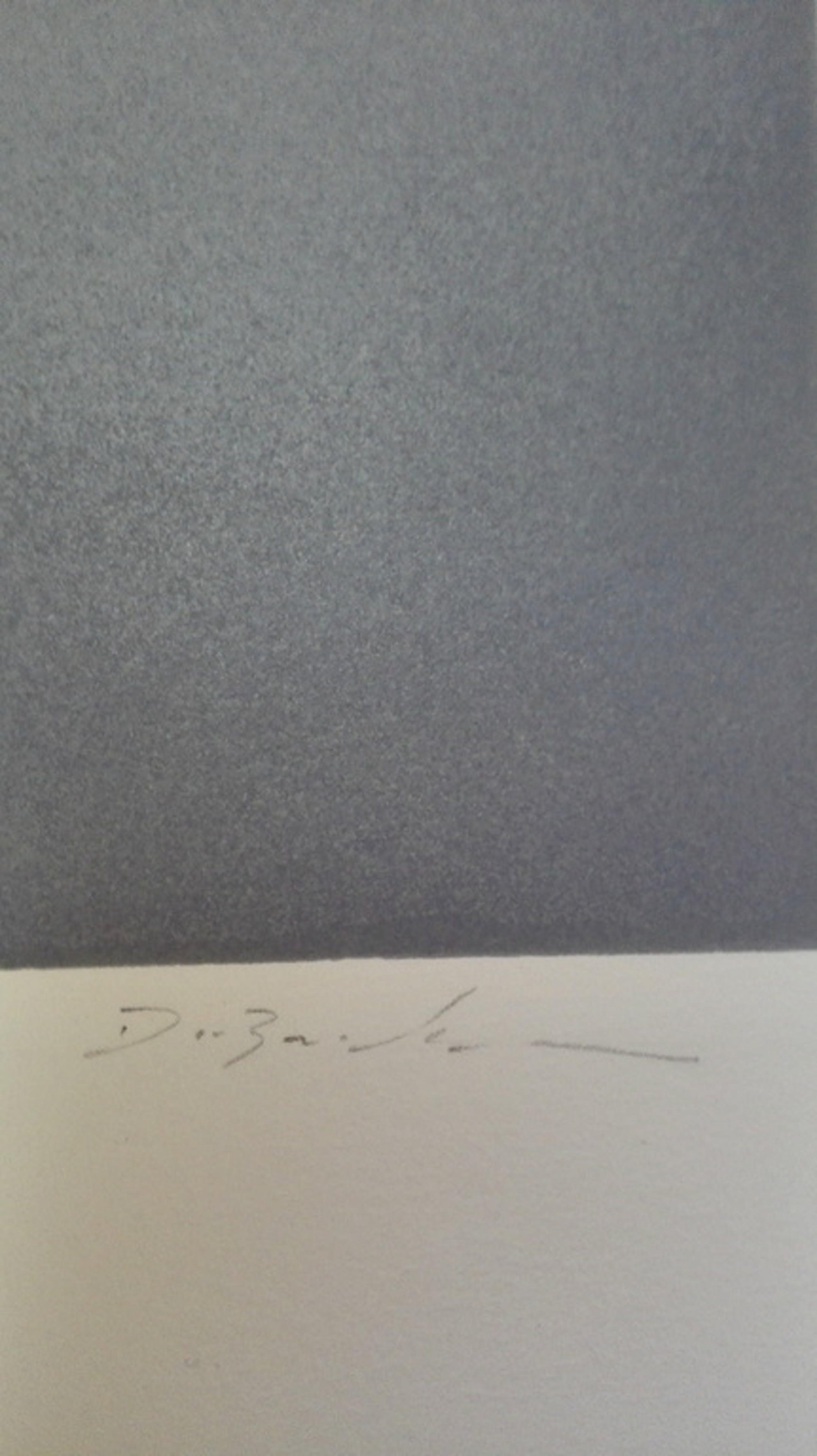 Onbekende kunstenaar, zeefdruk op papier,  kopen? Bied vanaf 1!